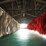 NPO法人TATSUNO LEATHER オンラインセミナー「ポスト・コロナ禍後のグローバル皮革産業のゆくえ」